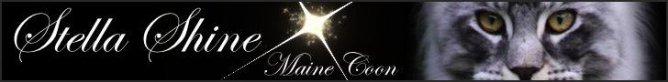 www.stella-shine.com/