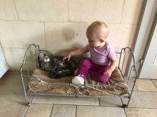 Lindsay mon adorable petite fille et Oli une jolie complicité et très bonne sociabilisation pour mes chatons!